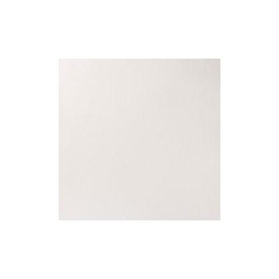 Titanium White (Opaque White)